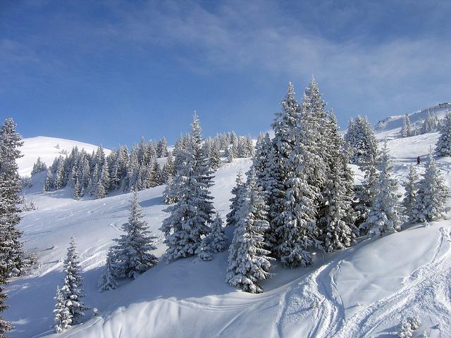 Freeride na sněhu